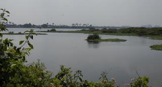 Korattur Lake