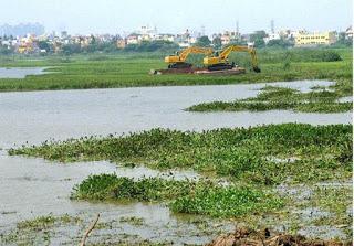 Madhavaram Lake