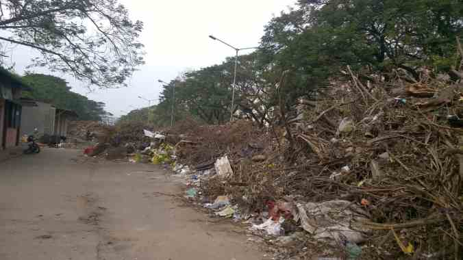 Cyclone Vardah damage
