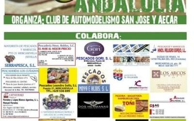 Última prueba del Campeonato de Andalucía 1/8 tt gas en San José de la Rinconada, Sevilla