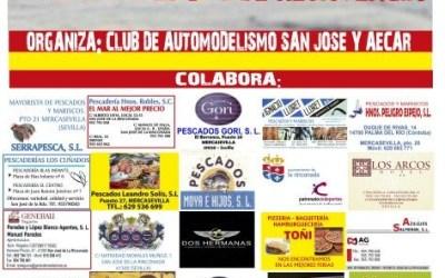 Campeonato de España de Resistencia 1/8TT Gas en San José de la Rinconada, Sevilla