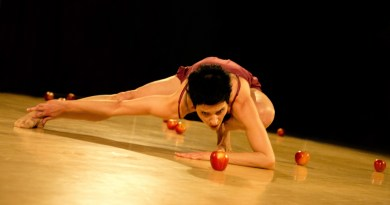 <em>Vedrai quello che vedrai</em>, Dufrayer Dance Company