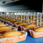 Cake Making Business In Nigeria