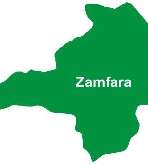 zamfaraTS-300x332
