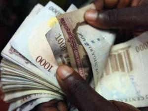 naira_notes