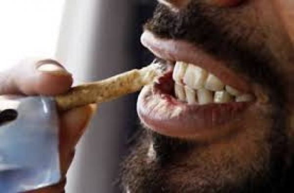 Surgeon Cautions On Use Of Chewing Stick Information Nigeria