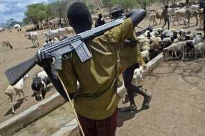 Herdsmen kill local farmer in Plateau state