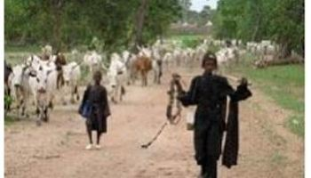 Many Feared Dead In Fresh Herdsmen Attack On Benue Village