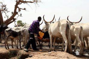 On Climate Change, Why We Must Stay Below 1.5 By Oyinkansade Fabikun