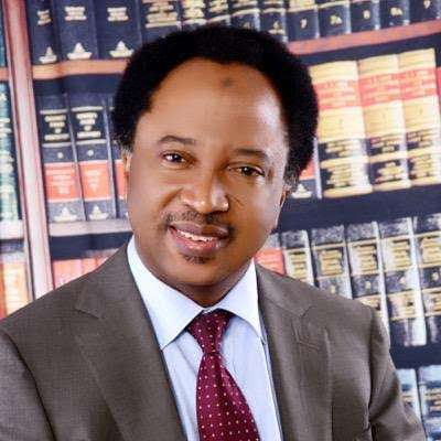 "how buhari administration should treat apc defectors senator shehu sani - Shehu Sani drops epic sub for El-Rufai over his ""godfatherism"" statement"