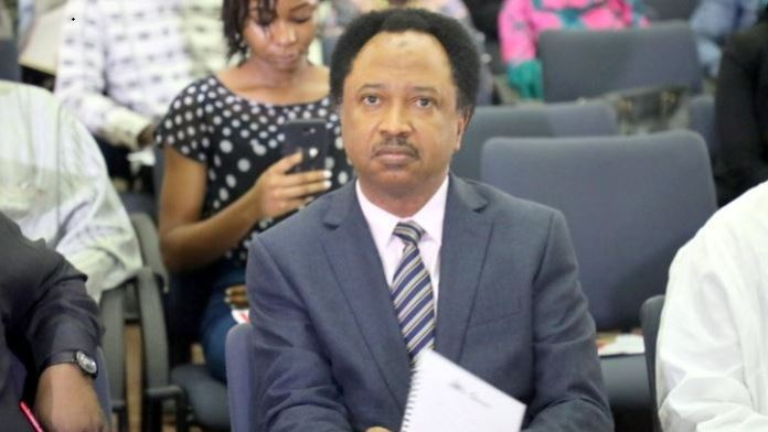 Before lifting them out of Poverty first lift them out of Banditry - Shehu Sani comes for Buhari