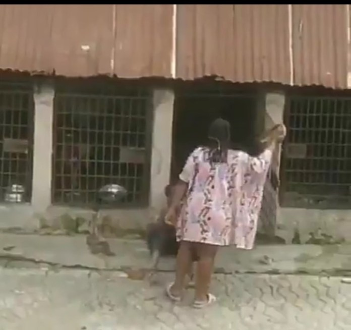 [Video]: Outrage As Nigerian Woman Mercilessly Flogs A Child Then Locks Him In A Dog Cage