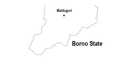 Female Suicide Bombers Strike In Borno, Kill Two