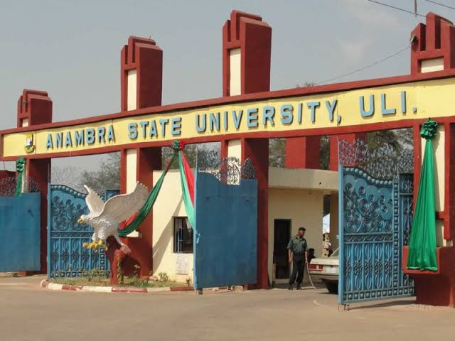 Image result for Okafor Chidinma Student of Anambra State University