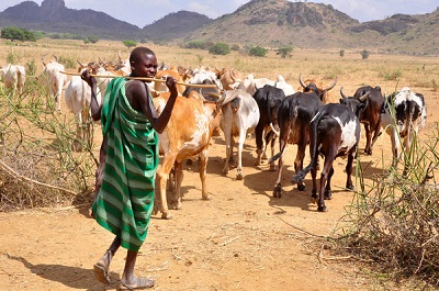 Government clarifies misconceptions about Ruga settlement