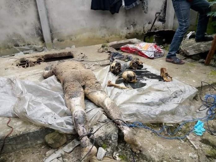 Dead body and skulls