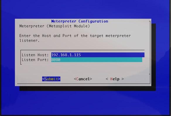 LANTurtle_modules_meterpreter_config