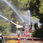 Valencia presenta el Plan de Prevención de incendios de la Devesa del Saler