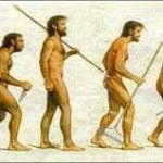 Homo sapiens, Homo digital