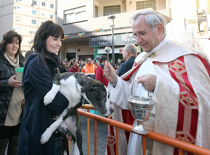 Bendición de animales con motivo de la festividad de san Antonio Abad/img. archivo informaValencia.com