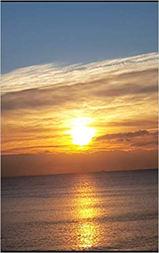 Portada del libro de V.Torres, 'Aceptar el destino'./InformaValencia.com