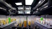 Laboratorios Moderna, Massachusetts, EE.UU./informaValencia.com