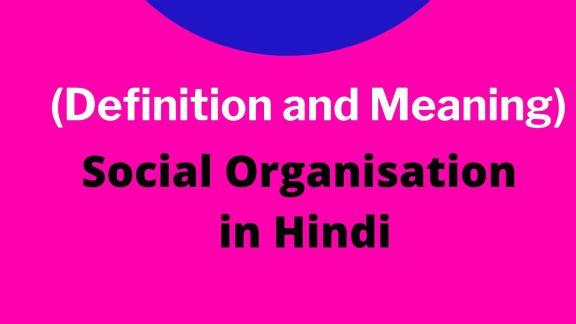 Social Organisation in Hindi