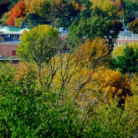 City of Watertown view from Thompson Park_-1858664018594084973