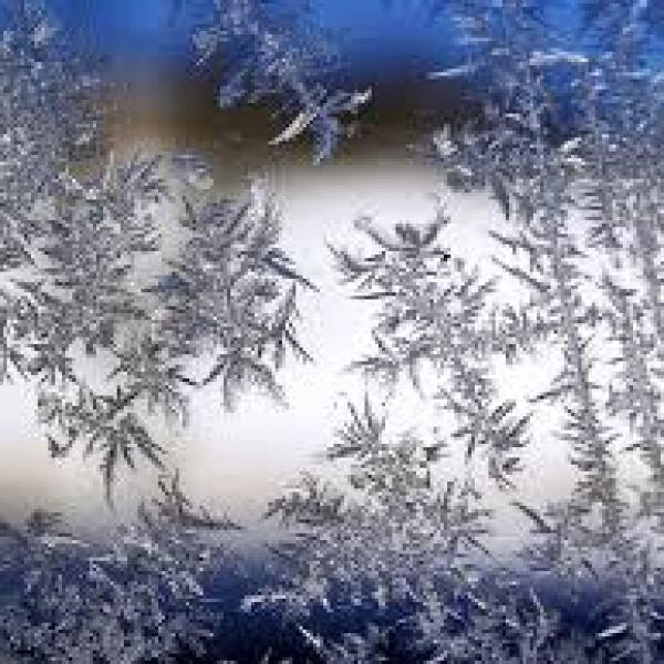 snow_1511281567690.jpg