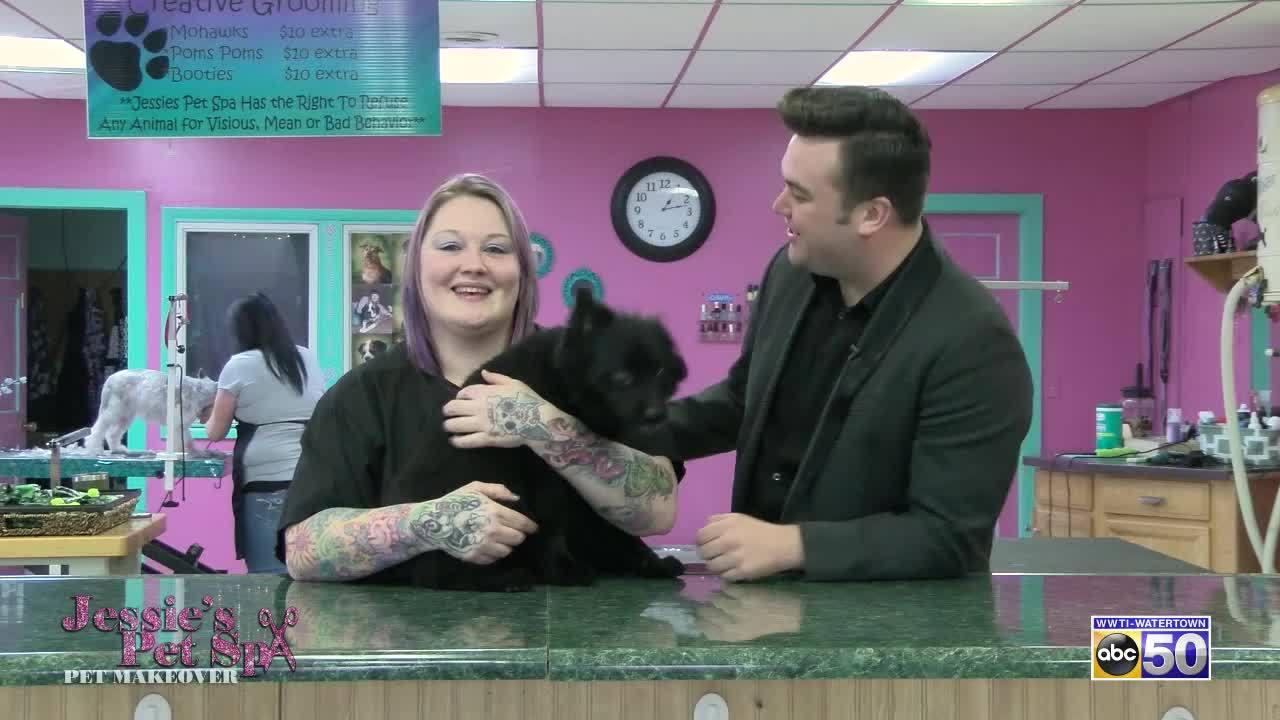 Jessie's Pet Spa Pet Makeover: Brody