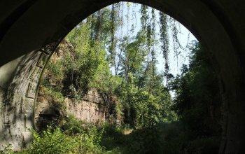 dschungel-tunnel-g-kropp
