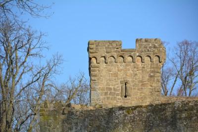 Burg Steinsberg59