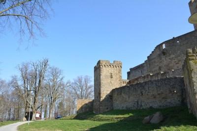 Burg Steinsberg61