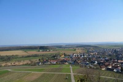 Burg Steinsberg87