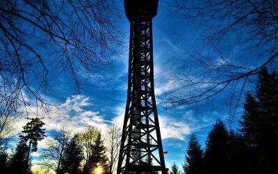 Der Teltschikturm, ein 41 m hoher Aussichtsturm im Odenwald
