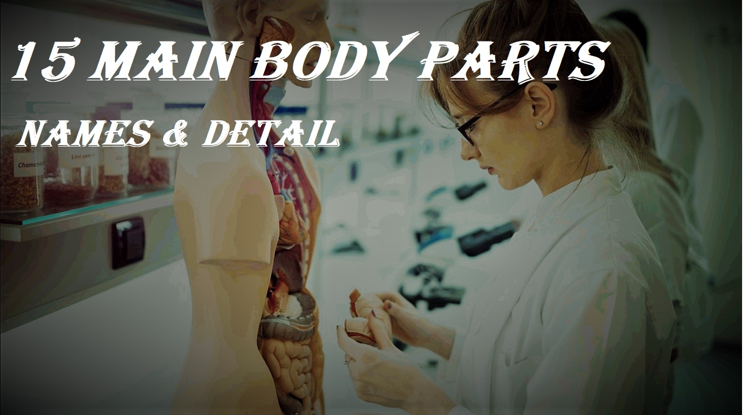 HUMAN BODY PARTS NAME