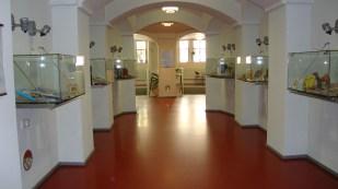 Uno de los pasillos de la Biblioteca Nacional de Helsinski, con exhibidores