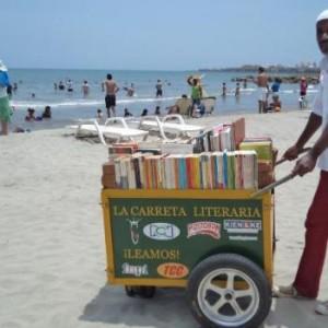 carrito bibliotecologico