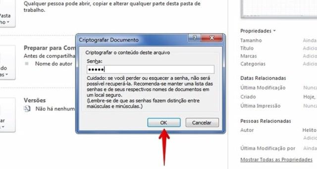 Tela de inserir senha para proteger pasta no Excel - Como proteger com senha um arquivo do Excel.
