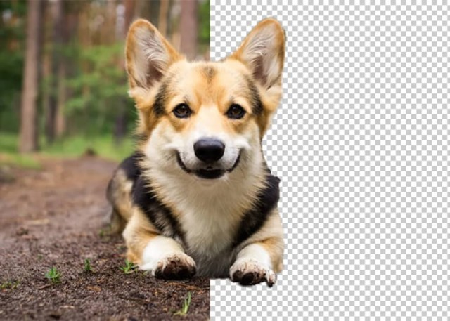remover o fundo de uma imagem