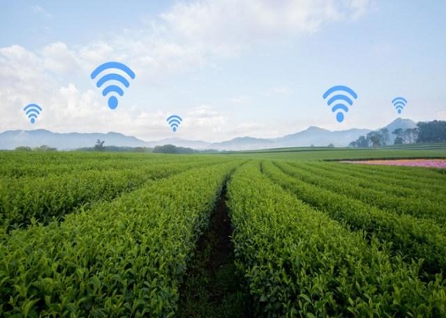Agro 4.0 e Conectividade no campo