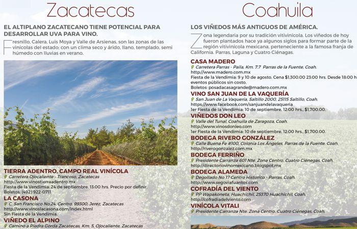 Fiestas de la vendimia en México: Zacatecas y Coahuila