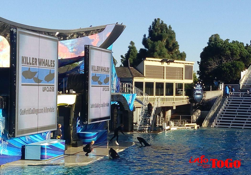 Diversión en SeaWorld para todas las edades