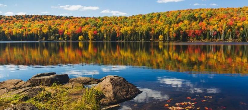 El paisaje ocre de Quebec de disfruta al aire libre