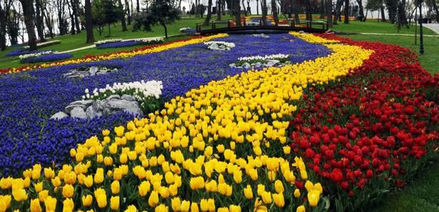 Фестивал на лалетата започна в Истанбул