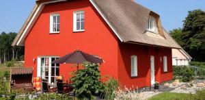 Ferienhaus Stubbenfelde Usedom Strandhafer