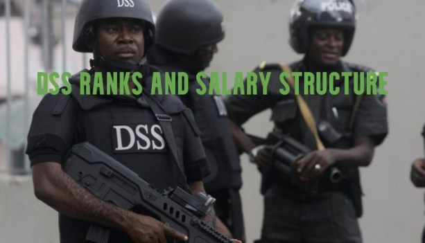 DSS Ranks and Salary Structure 2021 Guide