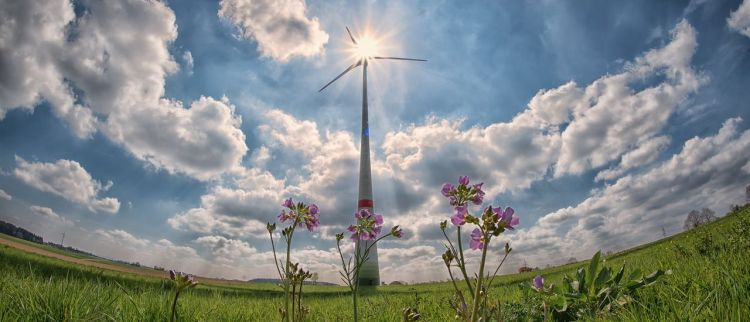 Color photo of a pinwheel on a meadow, with flowers in front and white clouds in a background - used to illustrate the connection of IoT and renewable energy.