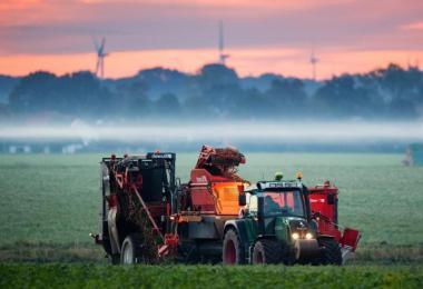 Ein Landwirt erntet Bio-Möhren auf einem Feld im Landkreis Hildesheim. Foto: Julian Stratenschulte/dpa