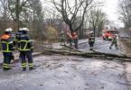 Sturmtief «Klaus» sorgte für umgekippte Bäume. Am Wochenende könnten die Schäden größer werden. Foto: Jonas Walzberg/dpa
